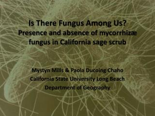 Is There Fungus Among Us? Presence and absence of  mycorrhiz�  fungus in California sage scrub