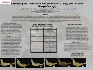 "Assessing the Occurrence and Severity of ""Lumpy Jaw"" in Wild Sheep ( Ovis  sp. )"