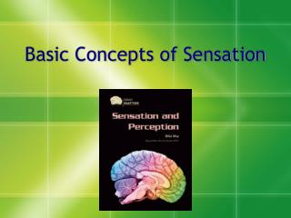 Basic Concepts of Sensation