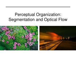 Perceptual Organization:  Segmentation and Optical Flow