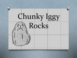 Chunky Iggy Rocks