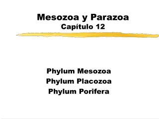 Mesozoa y Parazoa Cap tulo 12