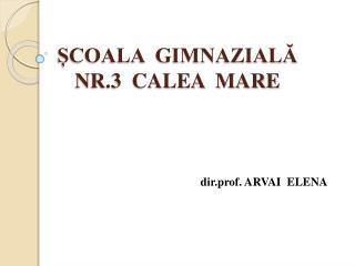 ȘCOALA  GIMNAZIALĂ  NR.3  CALEA  MARE