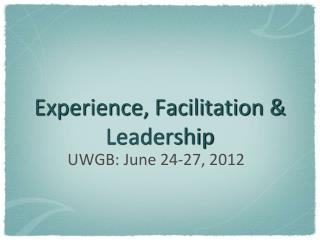 Experience, Facilitation & Leadership
