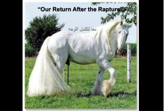 """"""" Our Return After the Rapture"""""""