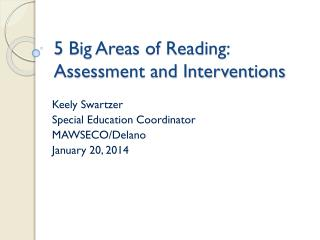 5 Big Areas of Reading:  Assessment and  Interventions