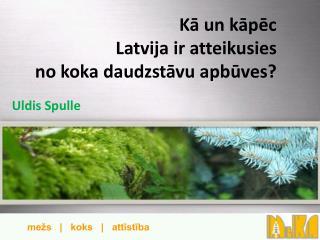 Kā un kāpēc  Latvija  ir atteikusies  no  koka daudzstāvu apbūves?
