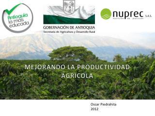 MEJORANDO LA PRODUCTIVIDAD AGRICOLA