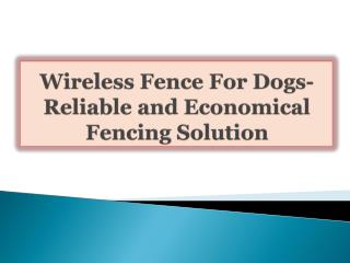 Wireless Fence For Dogs-Reliable and Economical Fencing Solu