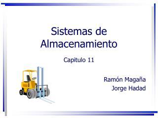 Sistemas de Almacenamiento  Capitulo 11