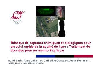 Ingrid Bazin,  Anne  Johannet , Catherine  Gonzalez, Jacky  Montmain, LGEI, École des Mines d'Alès