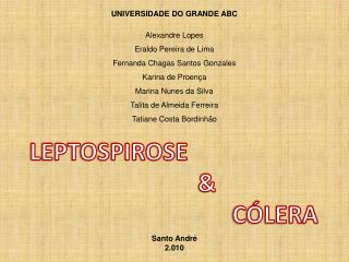 UNIVERSIDADE DO GRANDE ABC Alexandre  Lopes Eraldo Pereira de Lima