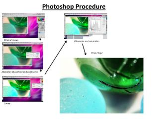 Photoshop Procedure