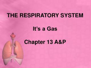 THE RESPIRATORY SYSTEM It's a Gas Chapter 13 A&P