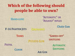 Which of the following should people be able to own?