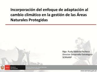 Blgo . Rudy Valdivia Pacheco Director Desarrollo Estratégico SERNANP