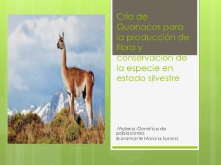 Cría  de Guanacos para la producción de fibra y  conservación de la especie en estado silvestre