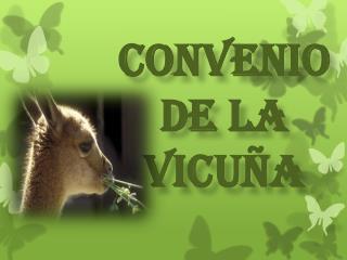 CONVENIO  DE LA VICUÑA