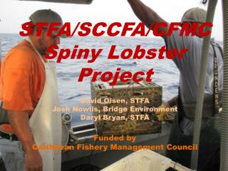STFA/SCCFA/CFMC Spiny Lobster Project