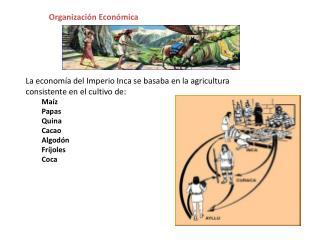 La economía del Imperio Inca se basaba en la agricultura consistente en el cultivo de: Maíz