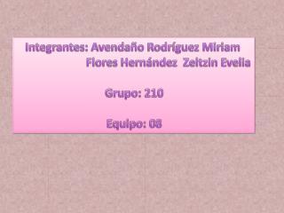 Integrantes: Avenda�o Rodr�guez Miriam                         Flores Hern�ndez   Z eltzin  Evelia