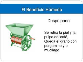 El Beneficio H�medo