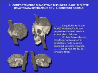 IL  COMPORTAMENTO DISADATTIVO  DI  PHINEAS  GAGE  RIFLETTE