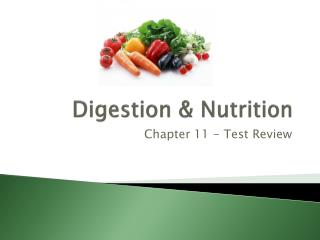 Digestion & Nutrition