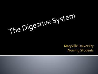 Maryville University  Nursing Students