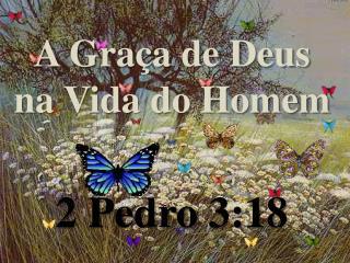 A Graça de Deus na Vida do Homem