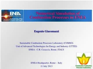 Numerical Simulation of Combustion Processes in ENEA