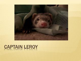 Captain Leroy