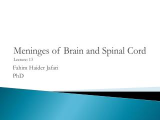 Meninges  of Brain and Spinal Cord Lecture: 13