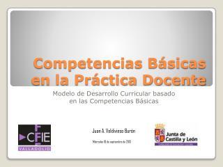 Competencias Básicas en la Práctica Docente