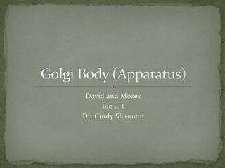 Golgi Body (Apparatus)