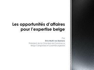 Les opportunit�s d�affaires pour l�expertise belge
