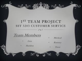 1 st  Team Project SST 3203 Customer Service