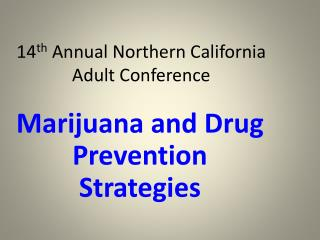 14 th  Annual Northern California Adult Conference