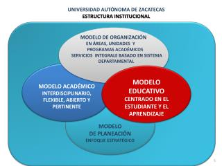 UNIVERSIDAD AUTÓNOMA DE ZACATECAS ESTRUCTURA INSTITUCIONAL