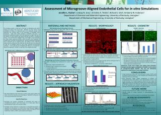 Assessment of Microgroove-Aligned Endothelial Cells for  in vitro  Simulations