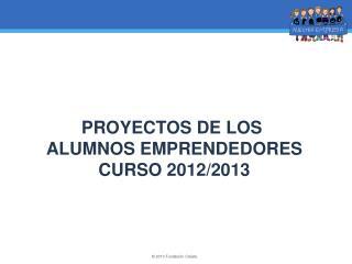 PROYECTOS DE LOS  ALUMNOS EMPRENDEDORES CURSO 2012/2013