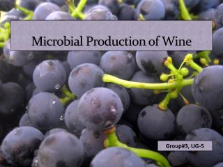 Microbial Production of Wine