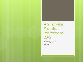 Animal-like Protists: Protozoans 20-2