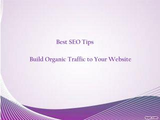 SEO Tips - Build Organic Traffic to Your Website