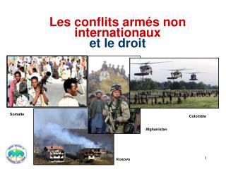 Les conflits armés non internationaux et le droit