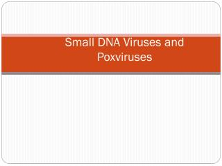 Small DNA Viruses and Poxviruses