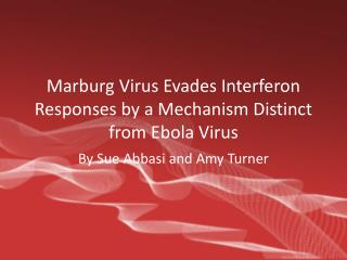 Marburg Virus Evades Interferon Responses by a Mechanism Distinct from Ebola Virus