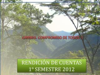 RENDICI�N DE CUENTAS       1� SEMESTRE 2012