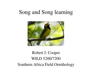 Song and Song learning