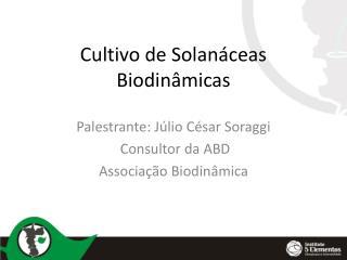 Cultivo de Solanáceas Biodinâmicas
